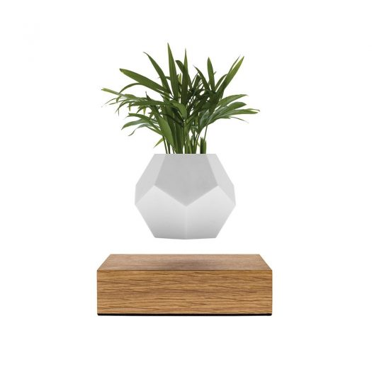 Lyfe The Levitating Planter by Flyte