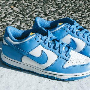 Nike Dunk Low Coast (W)