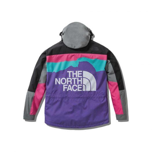 The North Face x Invincible 1994 Retro Mountain Light Jacket Multi