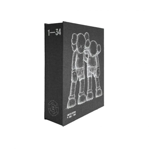 KAWS :ALONG THE WAY Monograph 2020