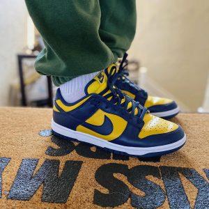 Nike Dunk Low Michigan (2021)